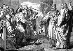 アロンの杖が蛇に