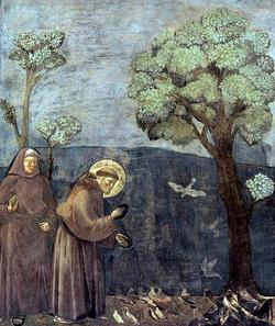 アッシジの聖フランチェスコ1