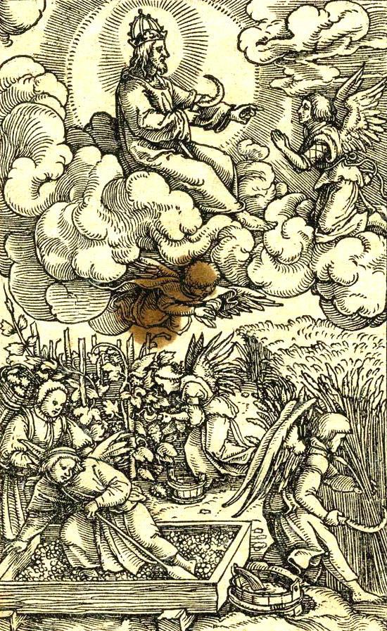 フルドリッヒ・ツヴィングリ:刈り入れ、ぶどうの収穫